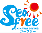沖縄ダイビング シーフリー シュノーケリング