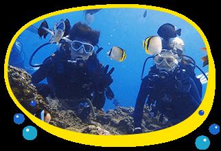 大人気のクマノミ(ニモ)と写真を一緒に撮りたい、たくさんのお魚が見方に人気のツアー子供も大人も大好きなニモを見て癒されてね餌をあげてる時はちゅら海水族館の中にいる見たいにカラフルな熱帯魚がいっぱい