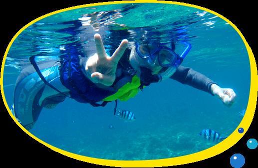 無料水中写真サービス! シュノーケリング・ダイビング