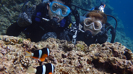 沖縄青の洞窟シュノーケリング&クマノミ体験ダイビング