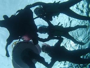 沖縄シュノーケリング思い出の海中写真