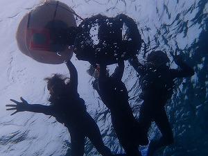 楽しい思いでづくりシュノーケリングの水中写真