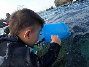 2歳の子供は浮き輪と箱メガネでシュノーケリング