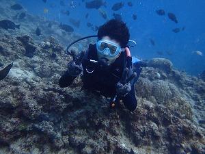 ダイビング写真沖縄