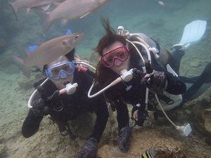 ダイビングカップル