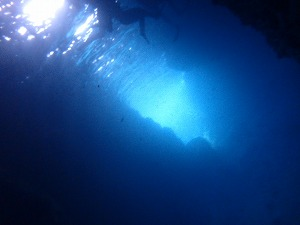 青の洞窟ダイビング 洞窟の様子