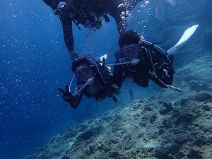 ダイビング写真