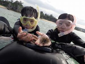 沖縄シュノーケリングウニと写真