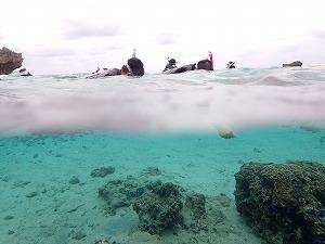 シュノーケリング水面、水中