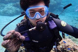 沖縄の綺麗な海でダイビング