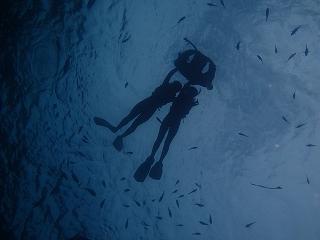 青の洞窟シュノーケリング水中シルエット
