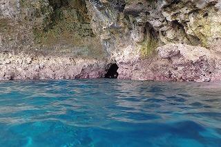 シュノーケリング中に外から見た青の洞窟