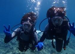 人気の貸切青の洞窟ダイビング