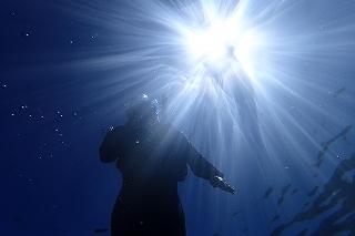 水中からシュノーケリング写真