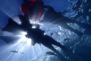 シュノーケリングで水中からの家族写真