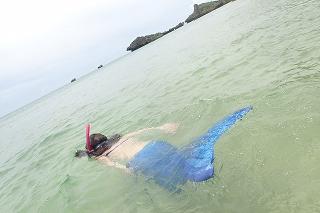 マーメイド体験 熱帯魚観察
