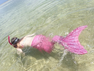 マーメイド体験 着たまま泳いで熱帯魚観察