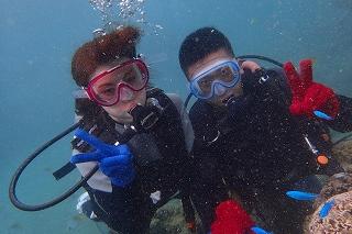 沖縄ダイビング 熱帯魚と