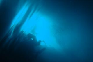 青の洞窟シュノーケリング 神秘的