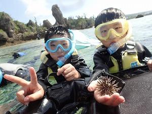 シュノーケリングで海の生き物と触れ合う