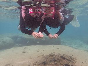 友達と一緒にシュノーケリングの海中写真