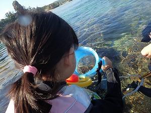 小さな子は浮き輪と箱メガネでシュノーケリング