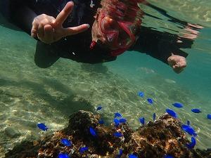 沢山のカラフル熱帯魚と一緒にシュノーケリングの記念撮影