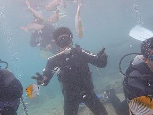 体験ダイビング魚