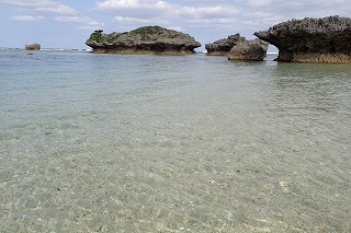 沖縄魚天国の綺麗なビーチで体験ダイビング