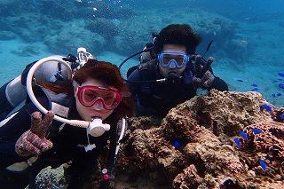 沖縄お魚さん沢山の海で貸切体験ダイビング