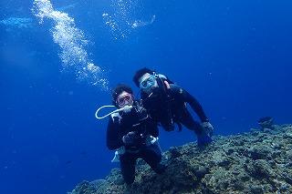 綺麗な沖縄の海でダイビング 無重力体験しよう