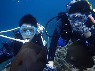 真栄田岬水中ダイビング