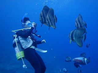 沖縄アドバンス講習水中