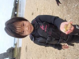 沖縄ビーチで貝拾い シュノーケリングツアー