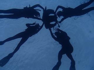 シュノーケリング海底から写真