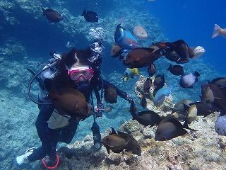 自然のちゅら海ダイビング