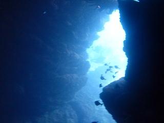 青の洞窟セノーテ