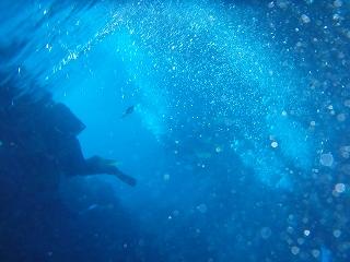 シュノーケリングの海の中