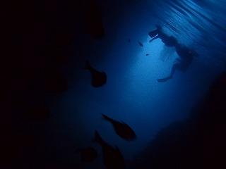 神秘的な青の洞窟 シュノーケリングで