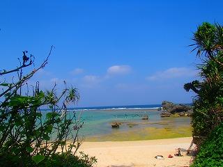 沖縄シュノーケリング ビーチの様子