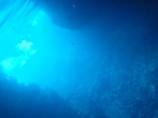 青の洞窟シュノーケリング 水中の様子