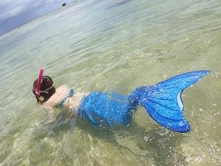 マーメイド体験 熱帯魚と一緒に泳げます☆