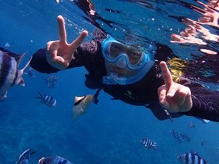 青の洞窟シュノーケリング 熱帯魚がたくさんいました!