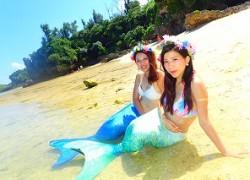 沖縄でマーメイド体験と青の洞窟ダイビング